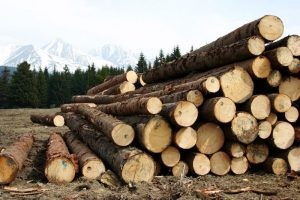 wood-1613940_960_720-e1501253251757